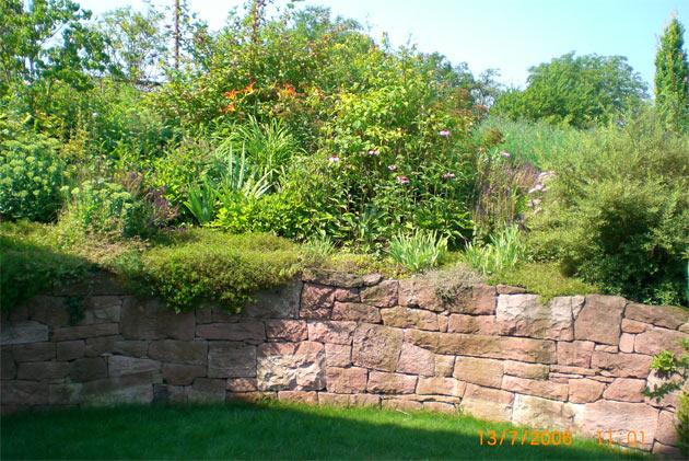 Sichtschutz Im Garten Metall Glas Und Mehr Pictures