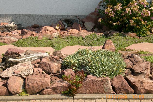 Steingarten Anlegen Aufbau : Betonpflaster,Treppen,Hangabstützungen,Sichtschutz,Zäune,Steingarten