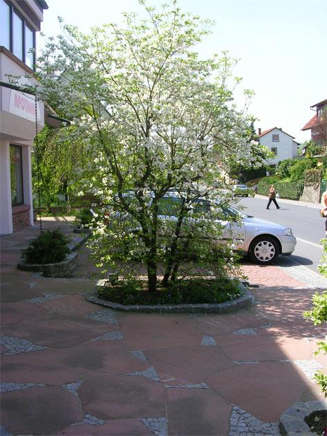 Winkler Kreative Grten Landschaftsbau Gartenbau Ihr