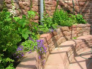 Mediterraner Garten Beispiele Llsamplessl Club